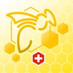 VDRB_BeeTraffic_logo
