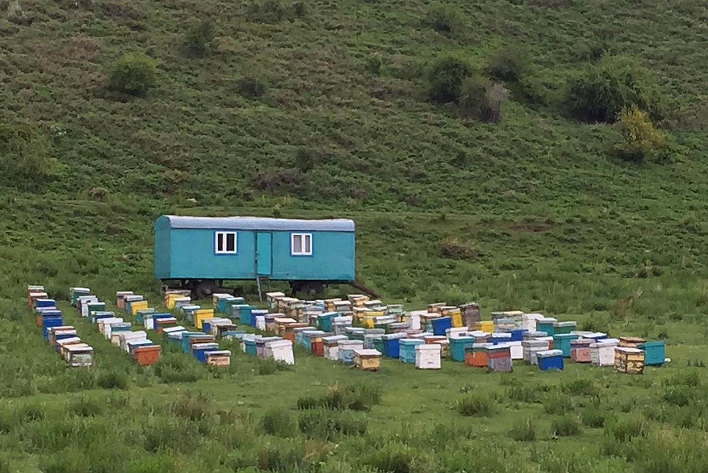 Ausladender Bienenstand in Kirgistan.