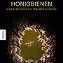 Honigbienen - geheimnisvolle Waldbewohner