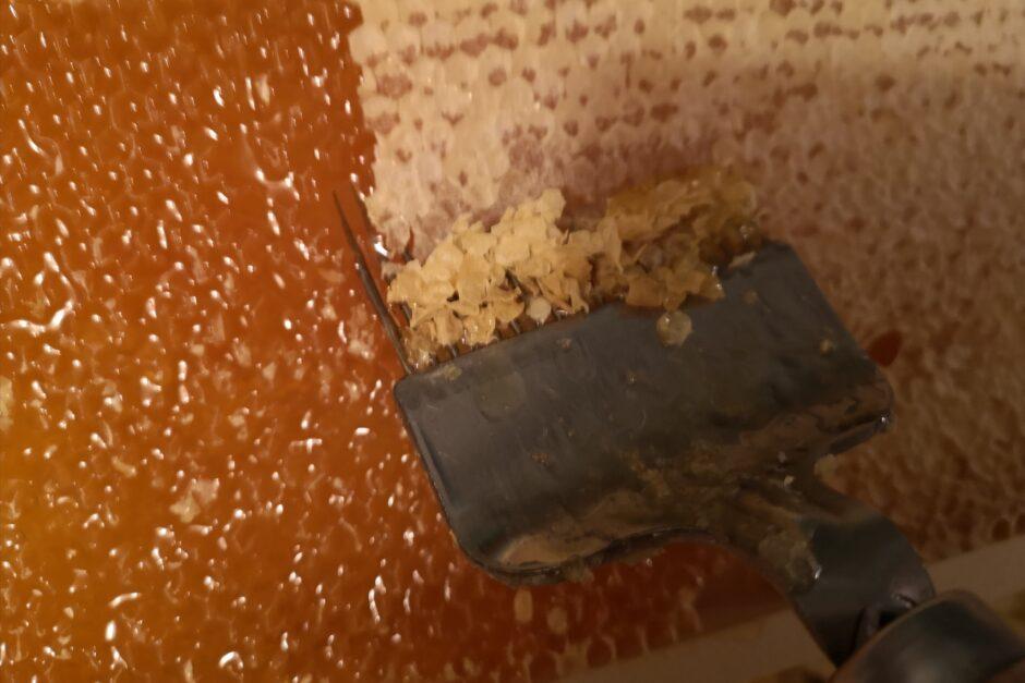 Abdeckeln einer Honigwabe