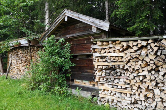 Hundertjähriges Bienenhaus: Hier hat Max Stoib unter Anleitung seines Grossvaters erste Erfahrungen mit der Imkerei gesammelt